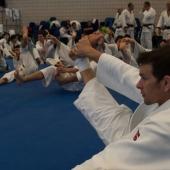 Skorpion Stage Internazionale Judo 2014 (23)