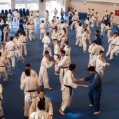 Skorpion Stage Internazionale Judo 2014 (3)