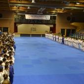 Winter Camp 2014 e EJU Seminar Lignano 2014 (3)