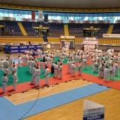 1° Stage Nazionale Ju-Jitsu FIJLKAM 2015 e Italian Open 013