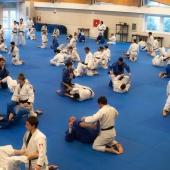 Skorpion Stage Internazionale Judo 2014 (13)