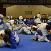 Winter Camp 2014 e EJU Seminar Lignano 2014 (9)