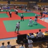 1° Stage Nazionale Ju-Jitsu FIJLKAM 2015 e Italian Open 014