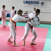 Fabio Dainese 1-2-6