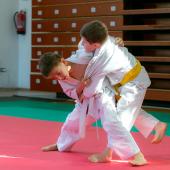Critelli-Judo-3135