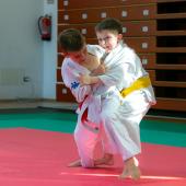 Critelli-Judo-3136