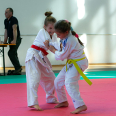 Critelli-Judo-3150
