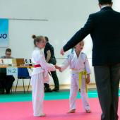 Critelli-Judo-3158