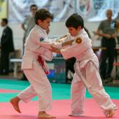 Critelli-Judo-3248