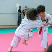Critelli-Judo-3295