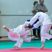 Critelli-Judo-3322