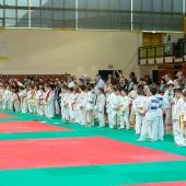 Critelli-Judo-3332